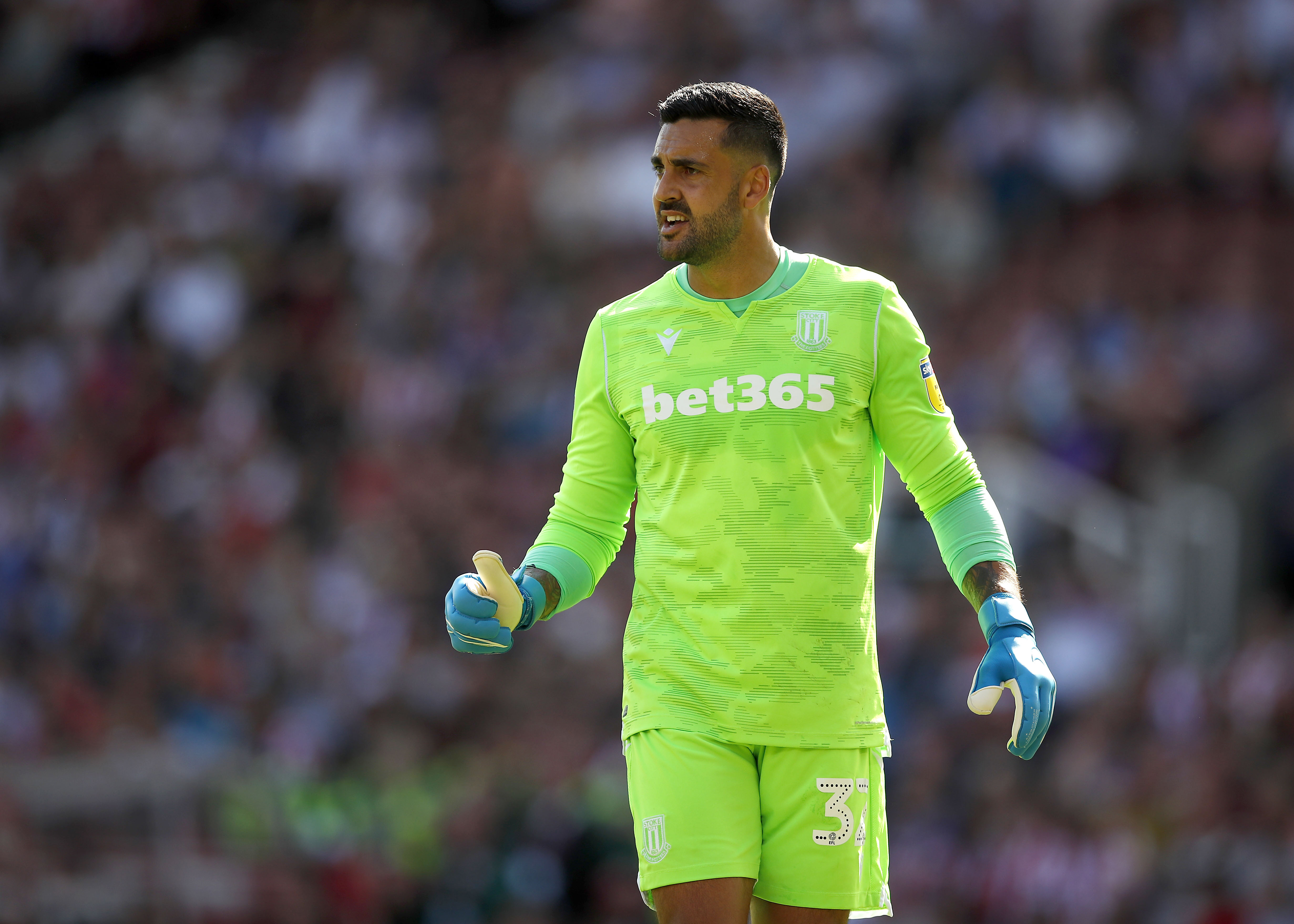 Adam Federici in action for Stoke City in the Championship