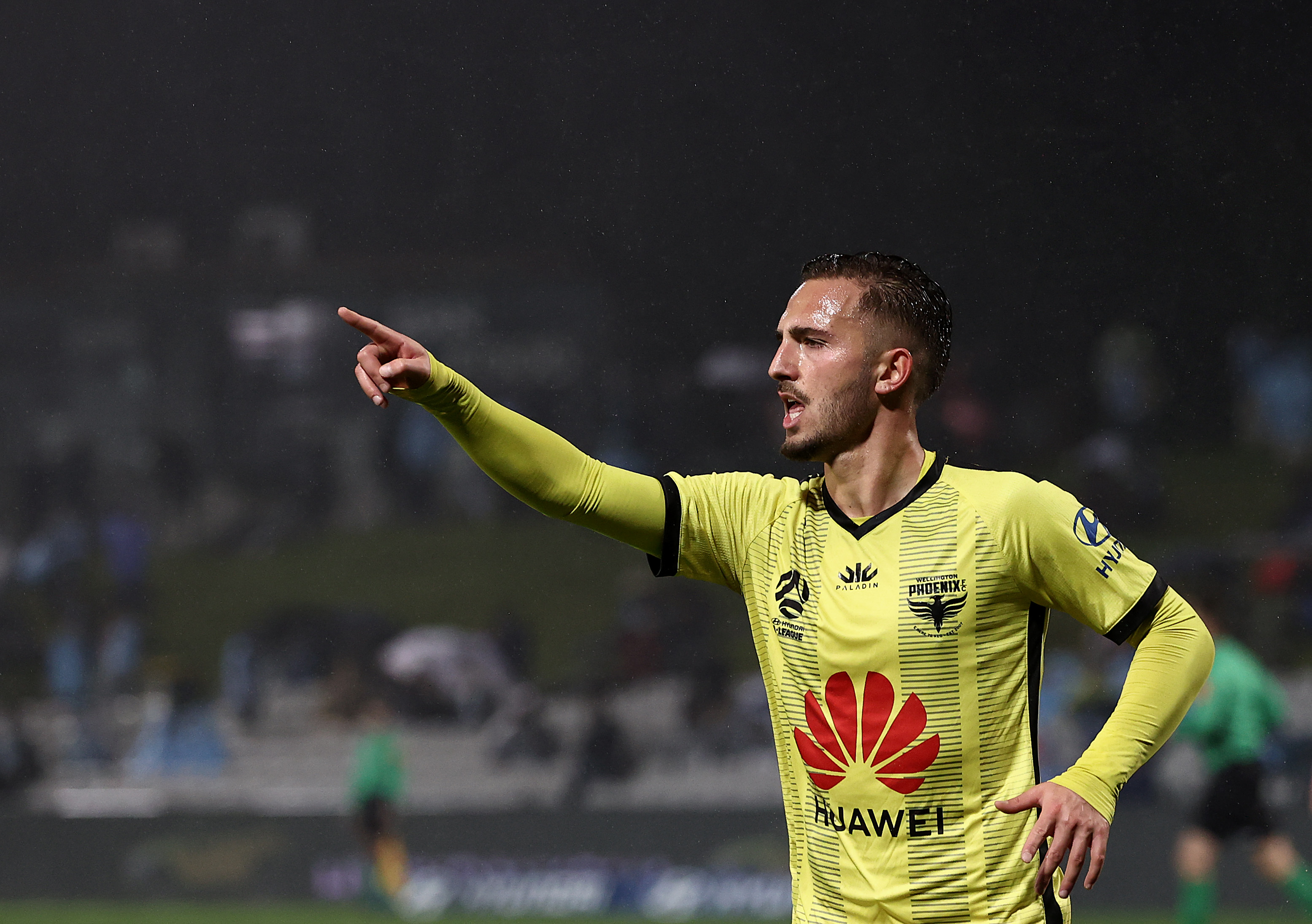 Piscopo is coming off a breakout season with Wellington in the A-League