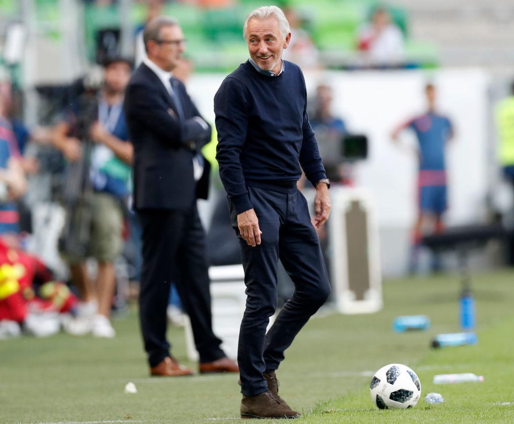Bert van Marwijk during the Hungary game
