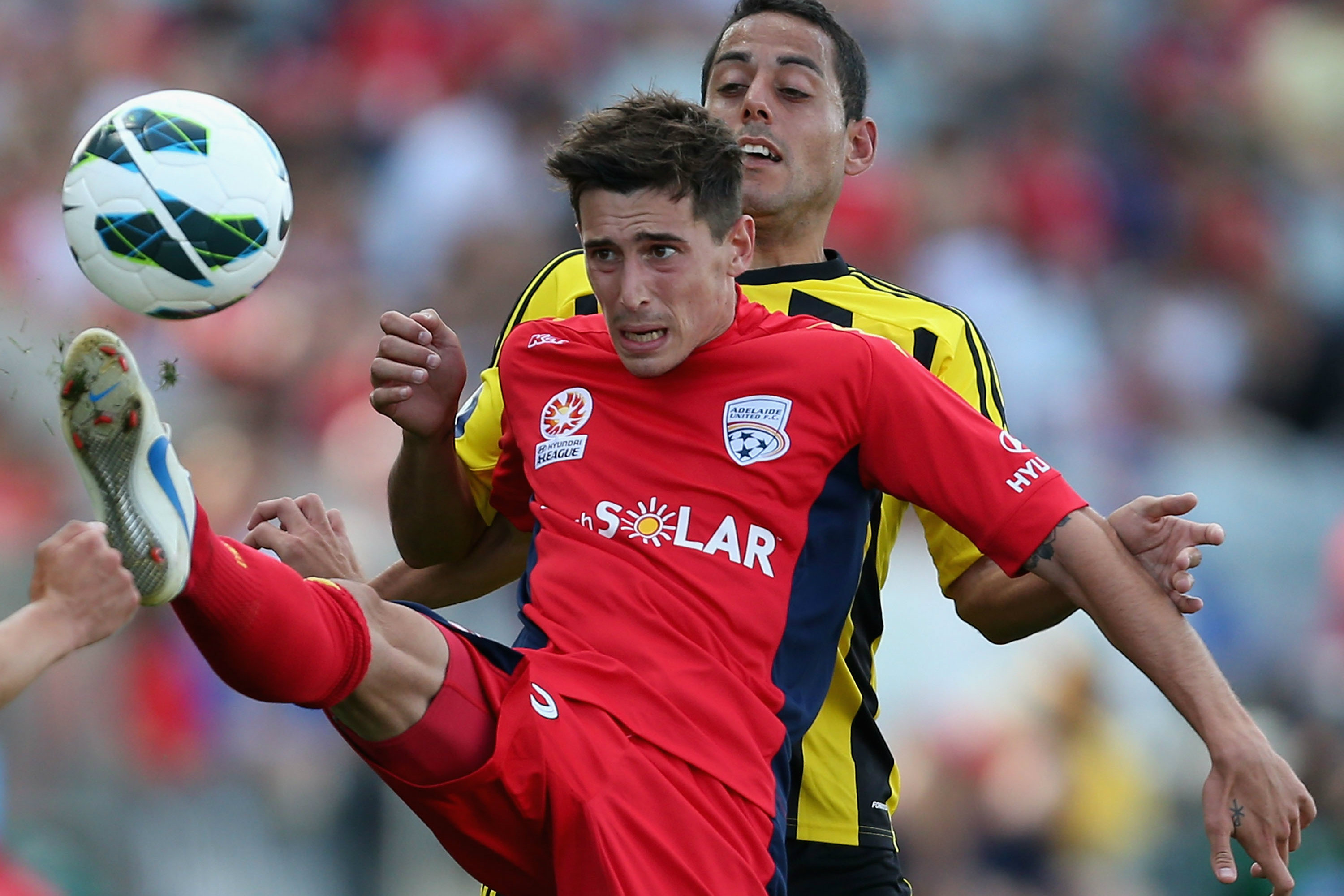 Evan Kostopoulos in action for Adelaide United