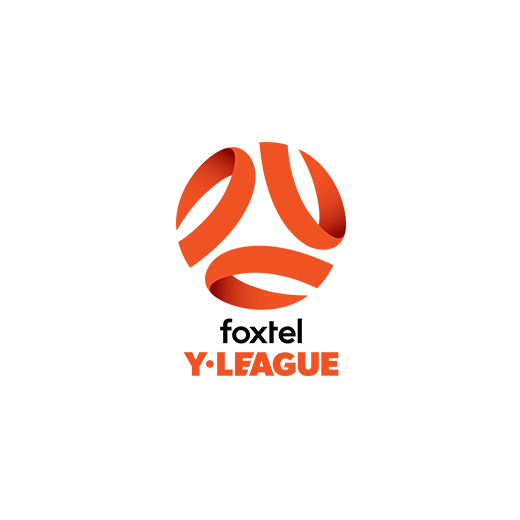 Y-League-Logo