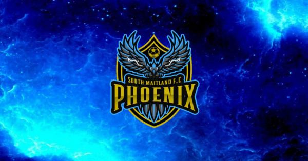 Phoenix rise from the ashes of COVID lockdown